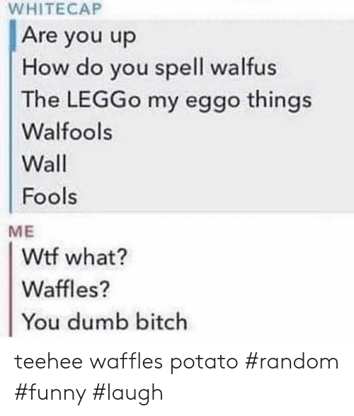 fools: WHITECAP  Are you up  How do you spell walfus  The LEGGO my eggo things  Walfools  Wall  Fools  ME  Wtf what?  Waffles?  You dumb bitch teehee waffles potato #random #funny #laugh