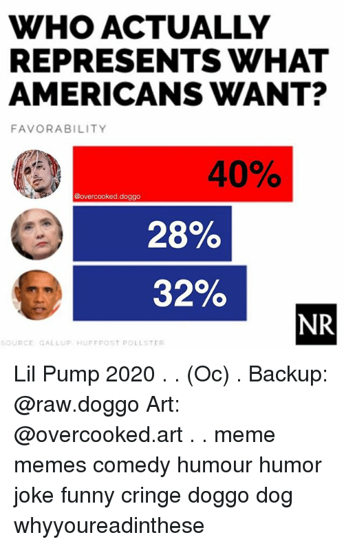 Art Meme: WHO ACTUALLY  REPRESENTS WHAT  AMERICANS WANT?  FAVORABILITY  40%  @overcooked.doggo  28%  32%  NR  SOURCE GALLUP HUFFRPOST POLLSTER Lil Pump 2020 . . (Oc) . Backup: @raw.doggo Art: @overcooked.art . . meme memes comedy humour humor joke funny cringe doggo dog whyyoureadinthese