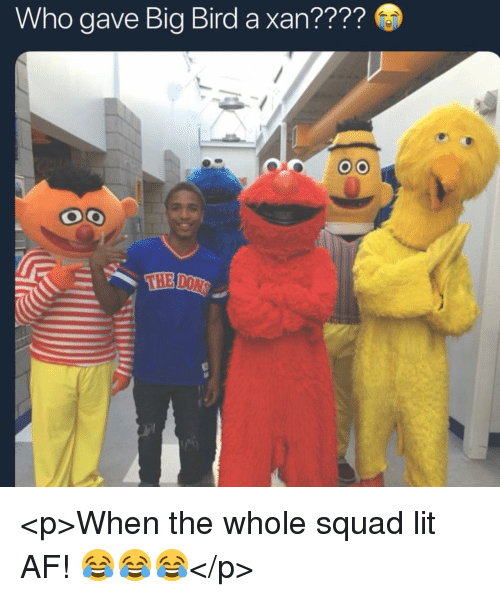 When The Whole Squad: Who gave Big Bird a xan???? <p>When the whole squad lit AF! 😂😂😂</p>