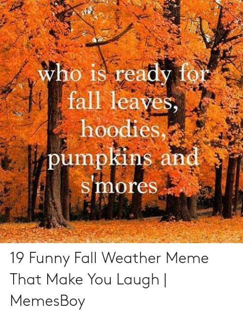 Fall Meme: who is ready for  fall leaves,  hoodies  pumpkins and  smores 19 Funny Fall Weather Meme That Make You Laugh | MemesBoy