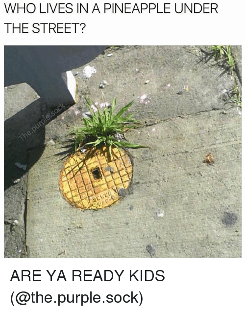 Undere: WHO LIVES IN A PINEAPPLE UNDER  THE STREET? ARE YA READY KIDS (@the.purple.sock)