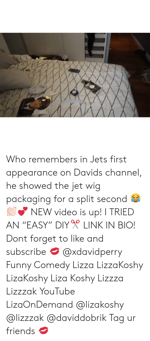 """Friends, Funny, and Memes: Who remembers in Jets first appearance on Davids channel, he showed the jet wig packaging for a split second 😂👏🏻💕 NEW video is up! I TRIED AN """"EASY"""" DIY✂️ LINK IN BIO! Dont forget to like and subscribe 💋 @xdavidperry Funny Comedy Lizza LizzaKoshy LizaKoshy Liza Koshy Lizzza Lizzzak YouTube LizaOnDemand @lizakoshy @lizzzak @daviddobrik Tag ur friends 💋"""