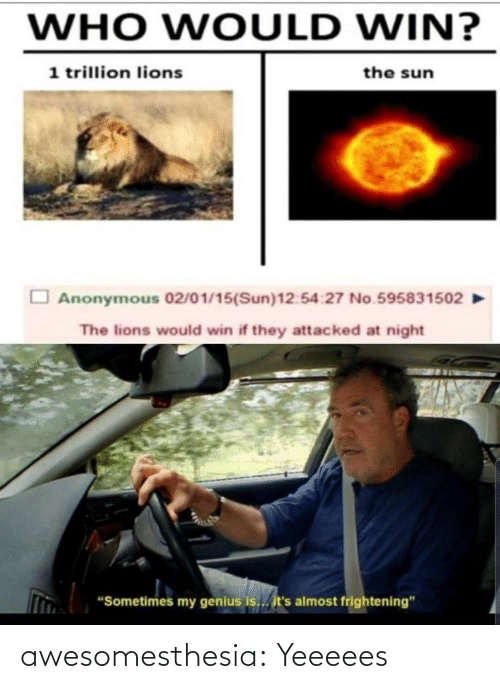 "Anonymous: WHO WOULD WIN?  1 trillion lions  the sun  Anonymous 02/01/15(Sun)12:54:27 No.595831502  The lions would win if they attacked at night  ""Sometimes my genius is... it's almost frightening"" awesomesthesia:  Yeeeees"