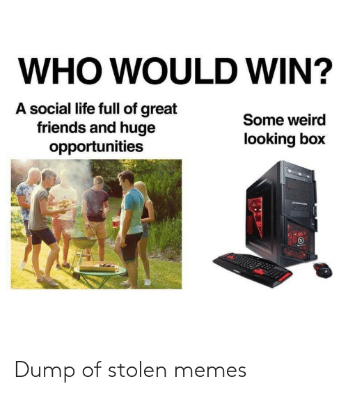 Friends, Life, and Memes: WHO WOULD WIN?  A social life full of great  friends and huge  opportunities  Some weird  looking box Dump of stolen memes