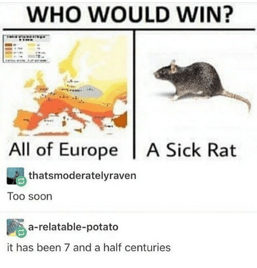 potatoe: WHO WOULD WIN?  All of Europe A Sick Rat  thatsmoderatelyraven  Too soon  a-relatable-potato  it has been 7 and a half centuries