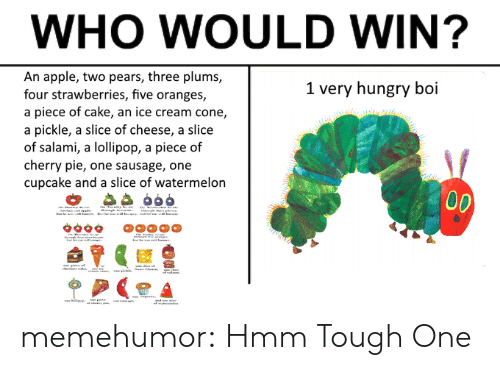 Apple, Hungry, and Tumblr: WHO WOULD WIN?  An apple, two pears, three plums,  four strawberries, five oranges,  a piece of cake, an ice cream cone,  a pickle, a slice of cheese, a slice  of salami, a lollipop, a piece of  cherry pie, one sausage, one  cupcake and a slice of watermelon  1 very hungry boi memehumor:  Hmm Tough One