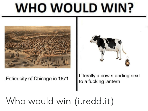 lantern: WHO WOULD WIN?  Literally a cow standing next  to a fucking lantern  Entire city of Chicago in 1871 Who would win (i.redd.it)