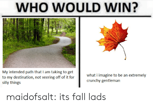 intended: WHO WOULD WIN?  My intended path that I am taking to get  to my destination, not veering off of it for  SI  what i imagine to be an extremely  crunchy gentleman  silly things maidofsalt: its fall lads