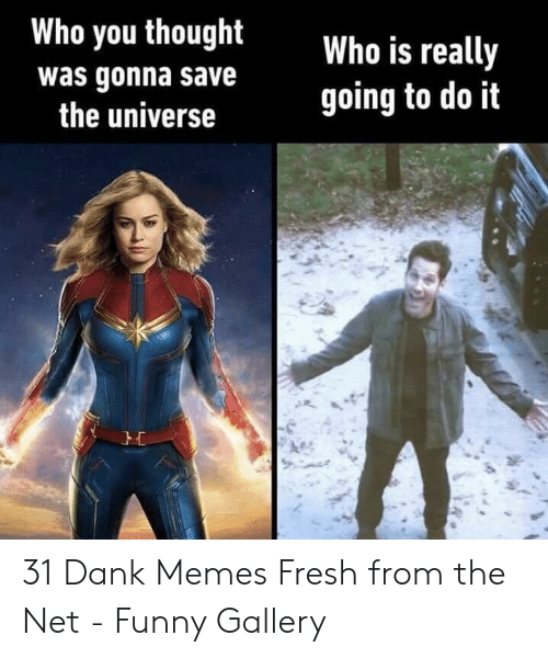 Dank, Fresh, and Funny: Who you thought  Who is really  going to do it  was gonna save  the universe 31 Dank Memes Fresh from the Net - Funny Gallery