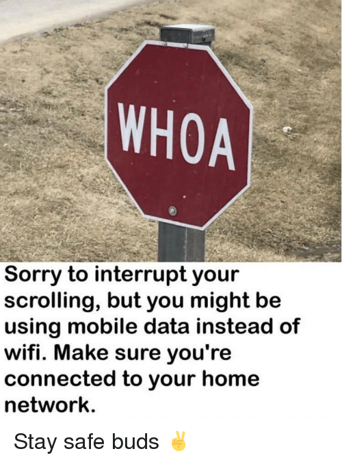 Reddit, Sorry, and Connected: WHOA  Sorry to interrupt your  scrolling, but you might be  using mobile data instead of  wifi. Make sure you're  connected to your home  network