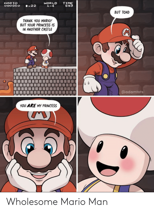 Mario: Wholesome Mario Man