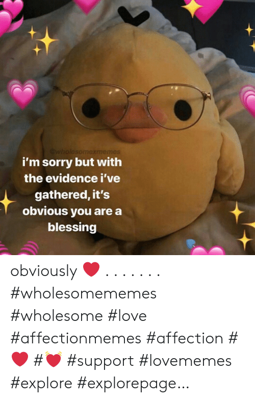 Wholesomexmemes I M Sorry But With The Evidence I Ve Gathered It S