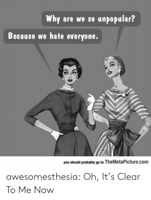 Tumblr, Blog, and Com: Why are we so unpopular?  Because we hate everyone.  you should probably go to TheMetaPicture.com awesomesthesia:  Oh, It's Clear To Me Now
