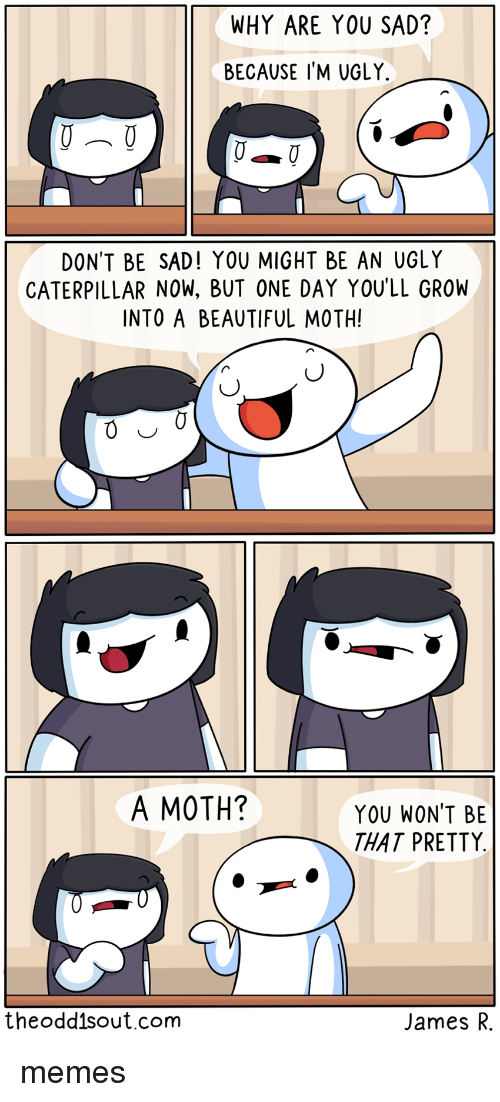Beautiful, Memes, and Ugly: WHY ARE YOU SAD?  BECAUSE I'M UGLY.  DON'T BE SAD! YOU MIGHT BE AN UGLY  CATERPILLAR NOW, BUT ONE DAY YOU'LL GROW  INTO A BEAUTIFUL MOTH!  A MOTH?  YOU WON'T BE  THAT PRETTY  theoddisout.com  James R. memes