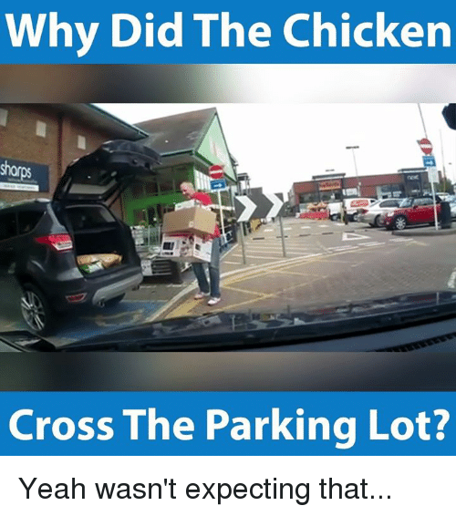 Chicken Crossing: Why Did The Chicken  Cross The Parking Lot? Yeah wasn't expecting that...