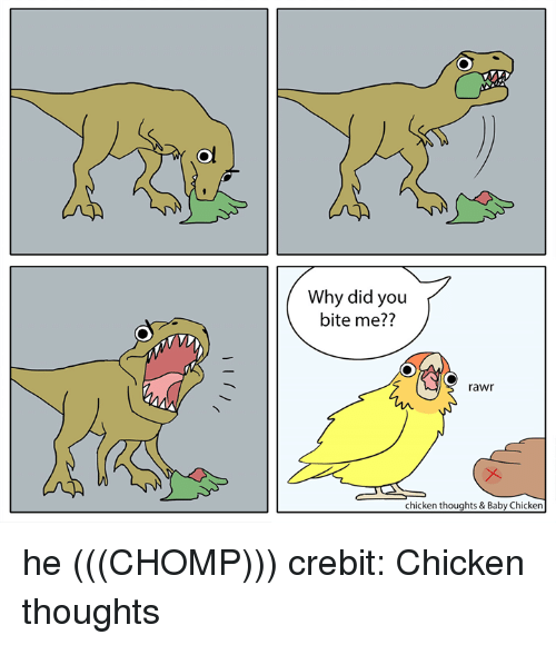Chicken, Baby, and Why: Why did you  bite me??  rawr  chicken thoughts & Baby Chicken he (((CHOMP))) crebit: Chicken thoughts