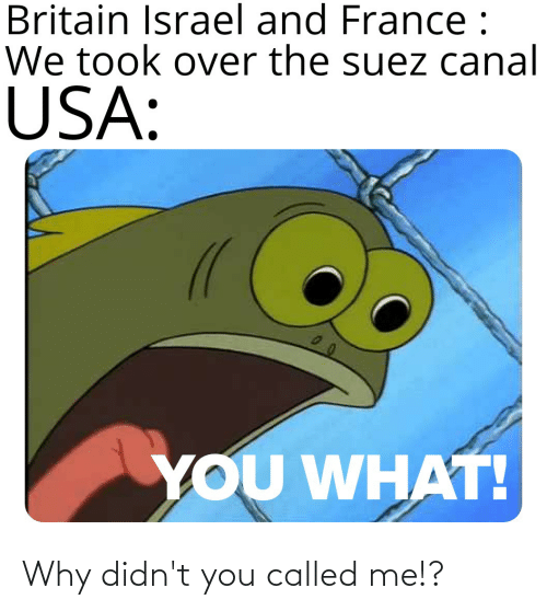 You Called: Why didn't you called me!?
