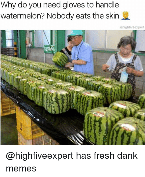 Watermelone: Why do you need gloves to handle  watermelon? Nobody eats the skin  @highfiveexpert @highfiveexpert has fresh dank memes