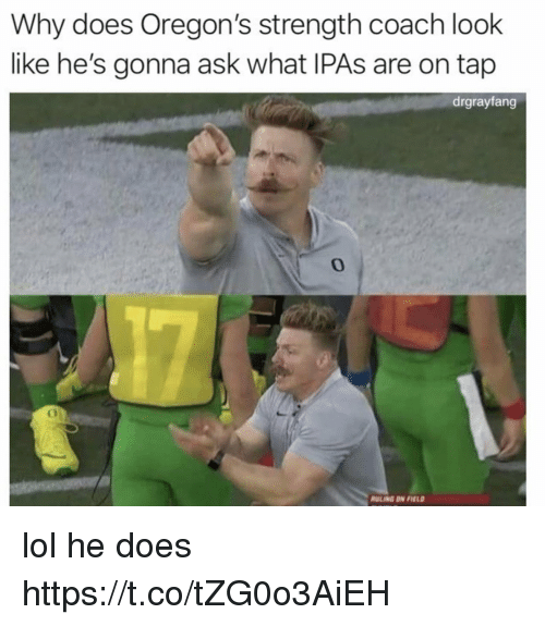 Funny, Lol, and Coach: Why does Oregon's strength coach look  like he's gonna ask what IPAs are on tap  drgrayfang  0  ULING DN FEL lol he does https://t.co/tZG0o3AiEH