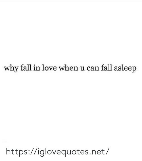 Fall, Love, and Net: why fallin love when u can fall asleep https://iglovequotes.net/