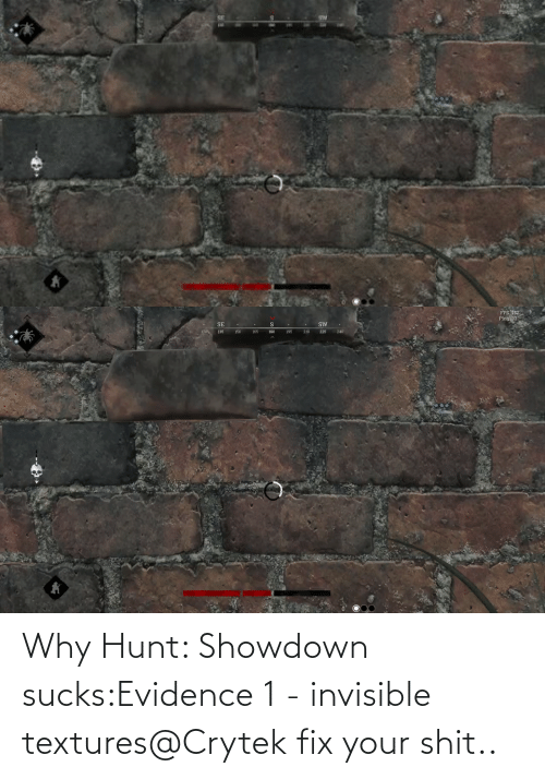 sucks: Why Hunt: Showdown sucks:Evidence 1 - invisible textures@Crytek fix your shit..