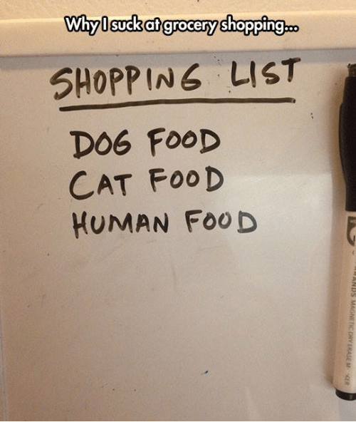 Food Cat: Why I suck at grocery shopping  SHOPPING LIST  DOG FOOD  CAT FOOD  HUMAN FooD