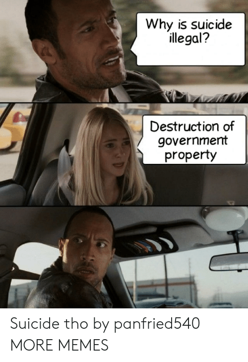 Dank, Memes, and Target: Why is suicide  illegal?  Destruction of  government  property Suicide tho by panfried540 MORE MEMES