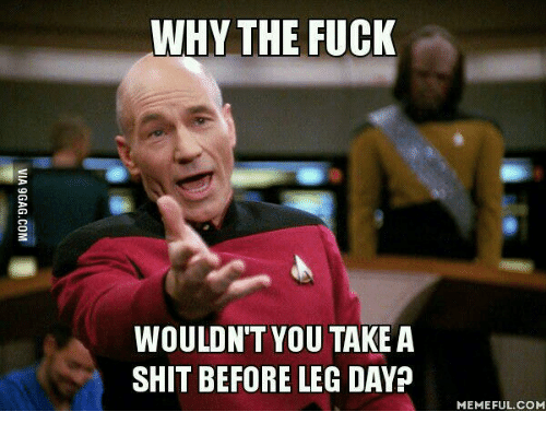 Leg Day Meme: WHY THE FUCK  WOULDN'T YOU TAKE A  SHIT BEFORE LEG DAY  MEMEFUL COM