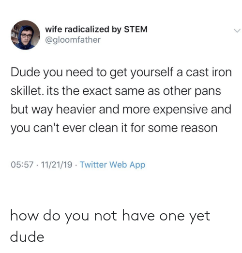 radicalized: wife radicalized by STEM  @gloomfather  Dude you need to get yourself a cast iron  skillet. its the exact same as other pans  but way heavier and more expensive and  you can't ever clean it for some reason  05:57 11/21/19 Twitter Web App how do you not have one yet dude