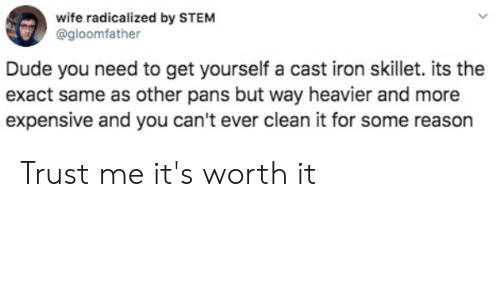 radicalized: wife radicalized by STEM  @gloomfather  Dude you need to get yourself a cast iron skillet. its the  exact same as other pans but way heavier and more  expensive and you can't ever clean it for some reason Trust me it's worth it