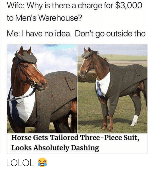 Warehouse: Wife: Why is there a charge for $3,000  to Men's Warehouse?  Me: I have no idea. Don't go outside tho  Horse Gets Tailored Three-Piece Suit,  Looks Absolutely Dashing LOLOL 😂