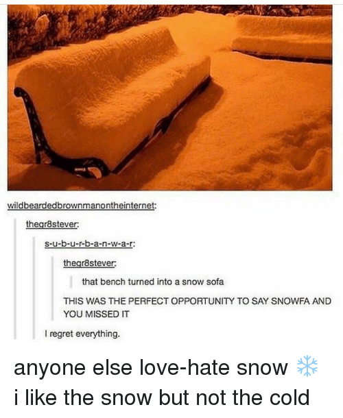 Love, Memes, and N.W.A.: wildbeardedbrownmanontheinternet:  thegr8stever:  s-u-b-u-r-b-a-n-w-a-r:  thegr8stever:  that bench turned into a snow sofa  THIS WAS THE PERFECT OPPORTUNIY TO SAY SNOWFA AND  YOU MISSED IT  I regret everything. anyone else love-hate snow ❄️ i like the snow but not the cold