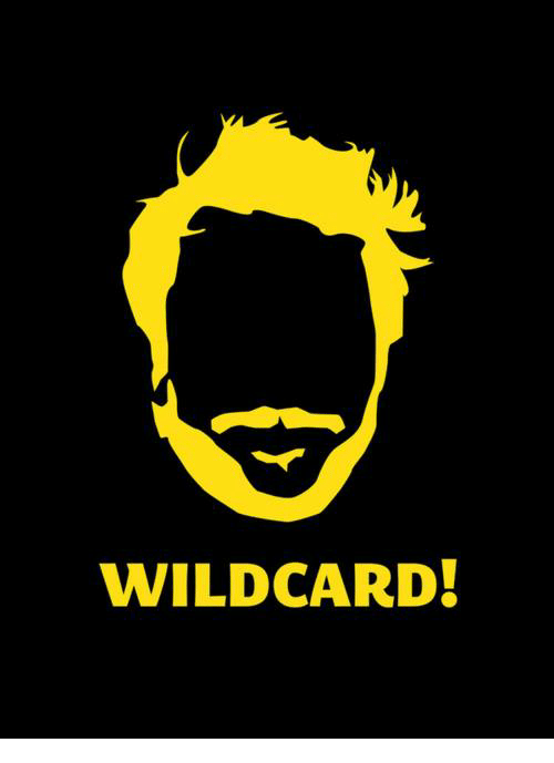 Memes, 🤖, and Wildcard: WILDCARD!