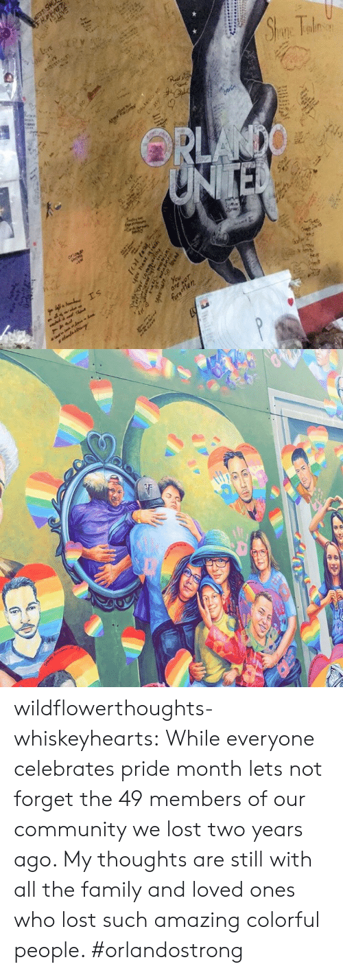 Community, Family, and Target: wildflowerthoughts-whiskeyhearts:  While everyone celebrates pride month lets not forget the 49 members of our community we lost two years ago. My thoughts are still with all the family and loved ones who lost such amazing colorful people. #orlandostrong
