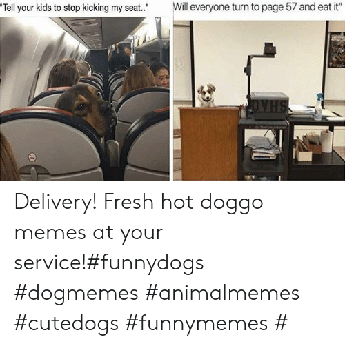 """eat it: Will everyone turn to page 57 and eat it""""  Tell your kids to stop kicking my seat."""" Delivery! Fresh hot doggo memes at your service!#funnydogs #dogmemes #animalmemes #cutedogs #funnymemes #"""