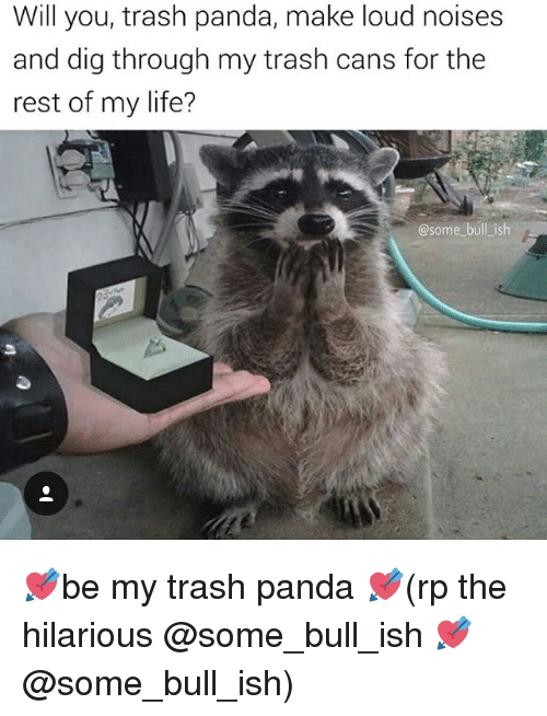 Will You Trash Panda Make Loud Noises and Dig Through My Trash Cans