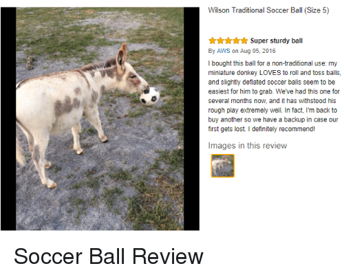 rough play: Wilson Traditional Soccer Ball (Size 5)  Super sturdy ball  By AWS on Aug 05, 2016  I bought this ball for a non-traditional use: my  miniature donkey LOVES to roll and toss balls,  and slightly deflated soccer balls seem to be  easiest for him to grab. We've had this one for  several months now, and it has withstood his  rough play extremely well. In fact, I'm back to  buy another so we have a backup in case our  first gets lost. I definitely recommend!  Images in this review <p>Soccer Ball Review</p>