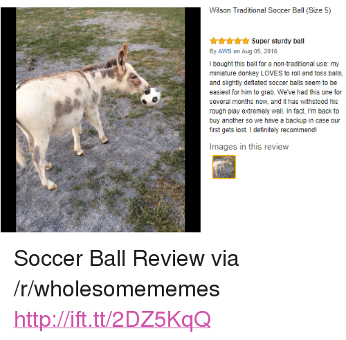 """rough play: Wilson Traditional Soccer Ball (Size 5)  Super sturdy ball  By AWS on Aug 05, 2016  I bought this ball for a non-traditional use: my  miniature donkey LOVES to roll and toss balls,  and slightly deflated soccer balls seem to be  easiest for him to grab. We've had this one for  several months now, and it has withstood his  rough play extremely well. In fact, I'm back to  buy another so we have a backup in case our  first gets lost. I definitely recommend!  Images in this review <p>Soccer Ball Review via /r/wholesomememes <a href=""""http://ift.tt/2DZ5KqQ"""">http://ift.tt/2DZ5KqQ</a></p>"""