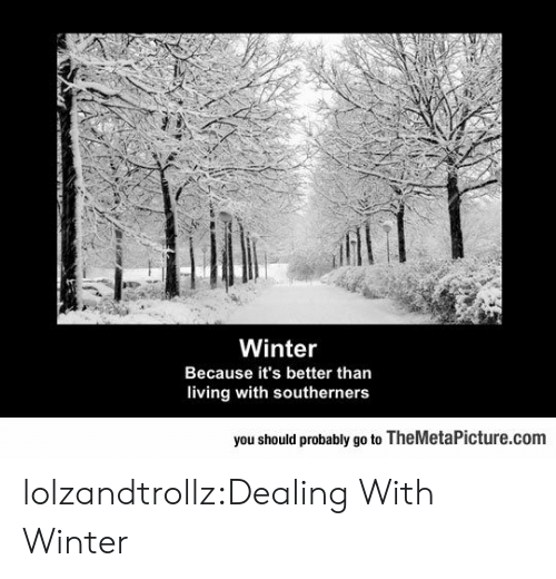 Tumblr, Winter, and Blog: Winter  Because it's better than  living with southerners  you should probably go to TheMetaPicture.com lolzandtrollz:Dealing With Winter