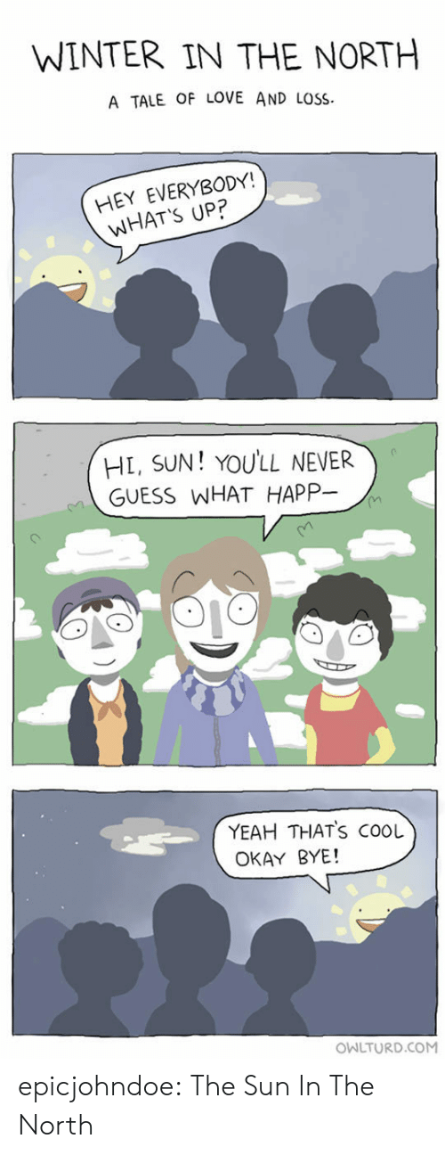 thats cool: WINTER IN THE NORTH  A TALE OF LOVE AND LOSS  HEY EVERYBODY!  WHAT'S UP?  HL, SUN! YOULL NEVER  GUESS WHAT HAPP-  YEAH THATS COOL  OKAY BYE!  OWLTURD.COM epicjohndoe:  The Sun In The North