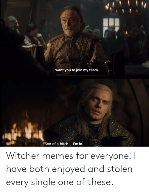 everyone: Witcher memes for everyone! I have both enjoyed and stolen every single one of these.