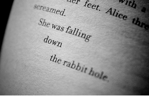 Falling Down: With a  r feet. Alice thre  screamed  She was falling  down  the rabbit hole