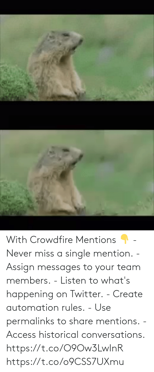 miss: With Crowdfire Mentions 👇 - Never miss a single mention. - Assign messages to your team members. - Listen to what's happening on Twitter. - Create automation rules. - Use permalinks to share mentions. - Access historical conversations.  https://t.co/O9Ow3LwInR https://t.co/o9CSS7UXmu