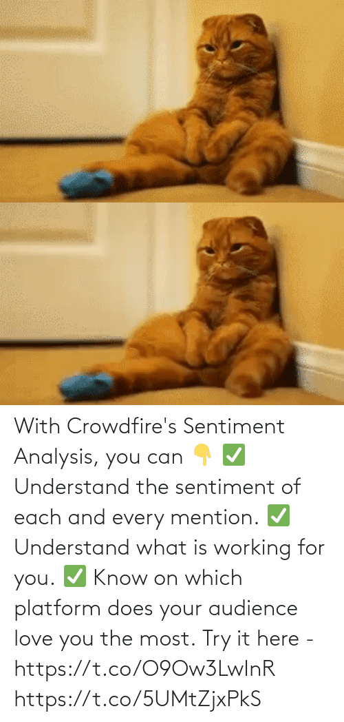 For You: With Crowdfire's Sentiment Analysis, you can 👇 ✅ Understand the sentiment of each and every mention. ✅ Understand what is working for you. ✅ Know on which platform does your audience love you the most.  Try it here - https://t.co/O9Ow3LwInR https://t.co/5UMtZjxPkS