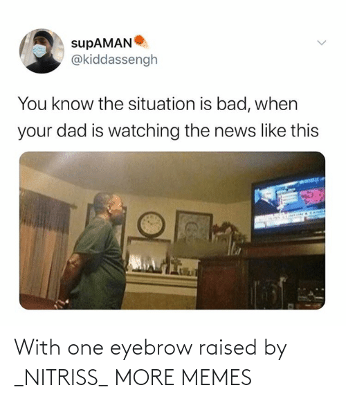 One Eyebrow Raised: With one eyebrow raised by _NITRISS_ MORE MEMES