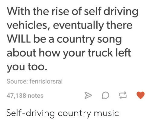 Driving, Music, and Country Music: With the rise of self driving  vehicles, eventually there  WILL be a country song  about how your truck left  you too.  Source: fenrislorsrai  47,138 notes Self-driving country music
