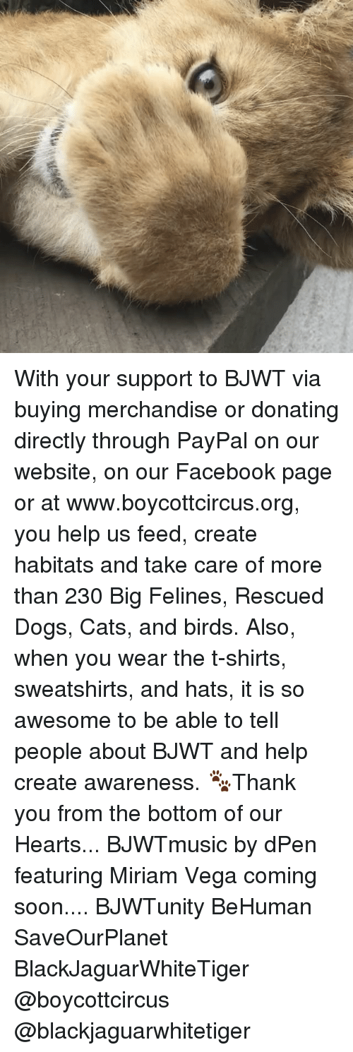 merchandising: With your support to BJWT via buying merchandise or donating directly through PayPal on our website, on our Facebook page or at www.boycottcircus.org, you help us feed, create habitats and take care of more than 230 Big Felines, Rescued Dogs, Cats, and birds. Also, when you wear the t-shirts, sweatshirts, and hats, it is so awesome to be able to tell people about BJWT and help create awareness. 🐾Thank you from the bottom of our Hearts... BJWTmusic by dPen featuring Miriam Vega coming soon.... BJWTunity BeHuman SaveOurPlanet BlackJaguarWhiteTiger @boycottcircus @blackjaguarwhitetiger