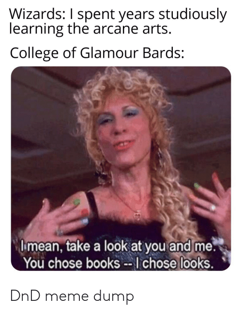 Books, College, and Meme: Wizards: I spent years studiously  learning the arcane arts.  College of Glamour Bards:  I mean, take a look at you and me.  You chose books --I chose looks. DnD meme dump