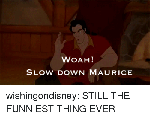 maurice: WOAH!  SLOW DOWN MAURICE wishingondisney: STILL THE FUNNIEST THING EVER