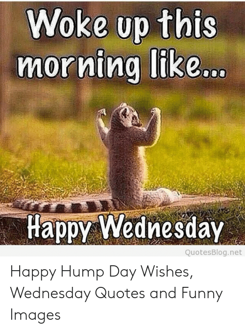 Woke Up This Morning Like Happy Wednesday QuotesBlognet ...